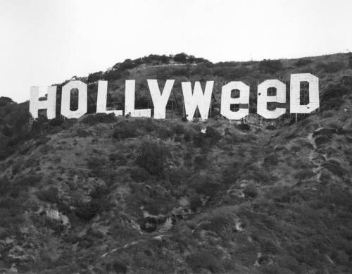 hollyweed.png