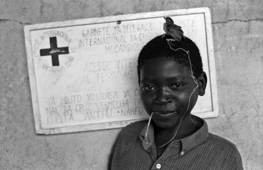 Mozambique. 18 April 1993. A young orphan boy with a bird. Photographer: Lukas Fellmann. © ICRC
